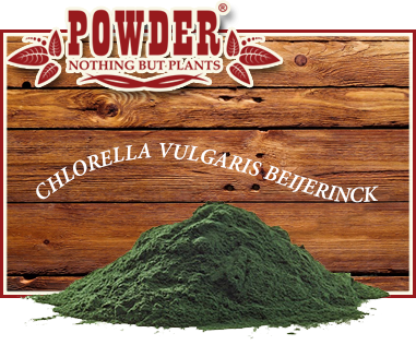 POWDER - Chlorella