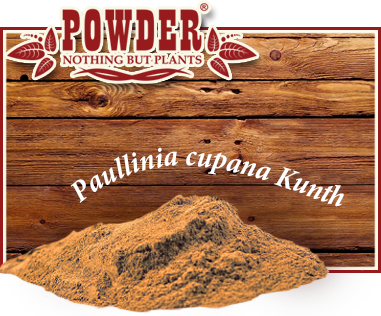 POWDER - ORGANIC GUARANA POWDER