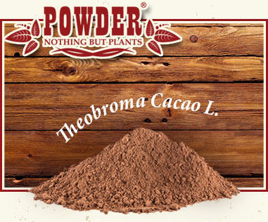 POWDER - ORGANIC RAW CACAO POWDER