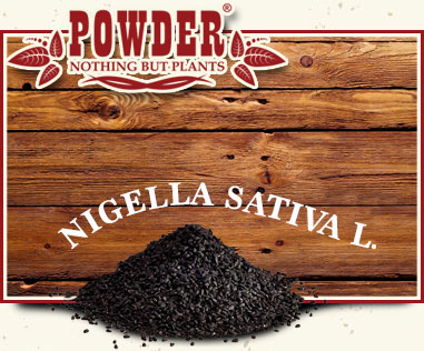 POWDER - BLACK CUMIN