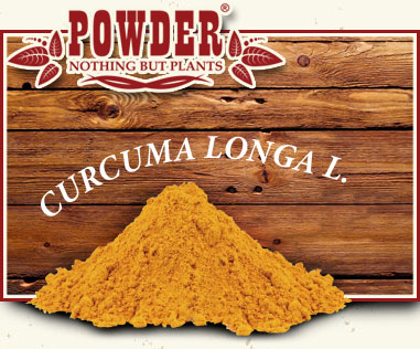 POWDER - TURMERIC