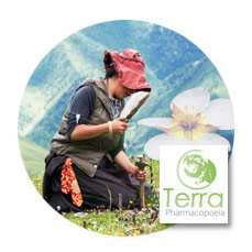Promoting Tibetan medicinal plants - Read the information sheet